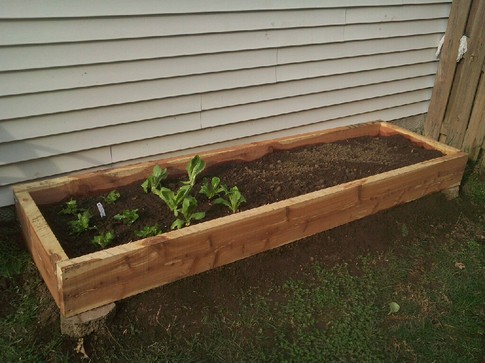 Easy Diy Raised Bed Garden The Green Living Guide