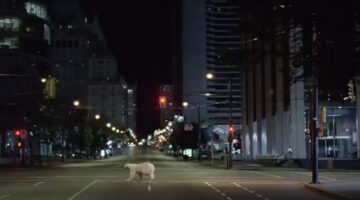 Nissan Leaf Commercial = Hugs From A Polar Bear