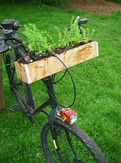 bicycle-garden.jpg