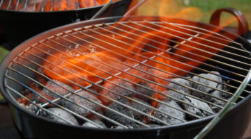 Barbecue Grilling: 5 Fun Facts To Help You Grill Green & Choose The Best Grill