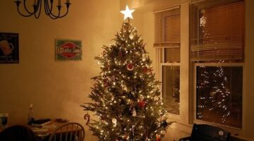 Christmas Tree Showdown: The Pros & Cons of Real vs. Artificial Christmas Trees
