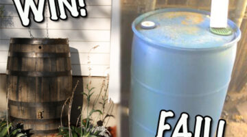 3 Cheap DIY Rain Barrels That Actually Look Nice!