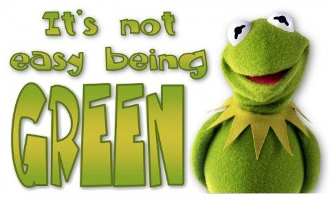its-not-easy-being-green-kermit-the-frog