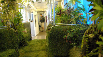 Nature in a Rail Car…Literally