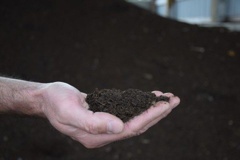 organic-fertilizer-made-from-animal-waste