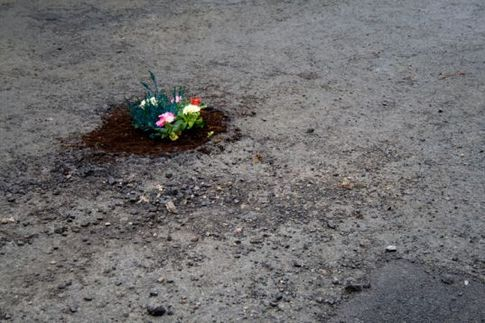 pothole_garden_by_Pete_Dungey.jpg
