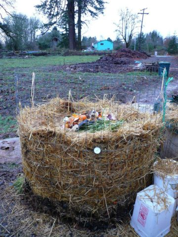 Recycle Compost Pile