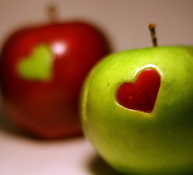 5 green valentine s day date ideas the green living guide